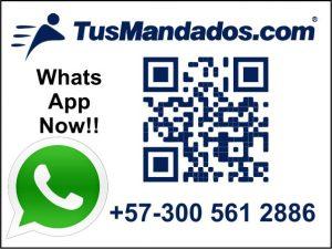 WhatsApp: +573005612886